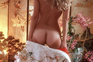 Terri Welles playboy