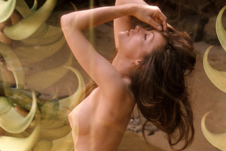 Julie Newmar hot pictures