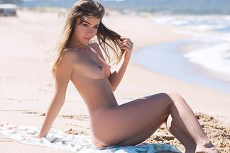 Lilii in Ocean Breeze